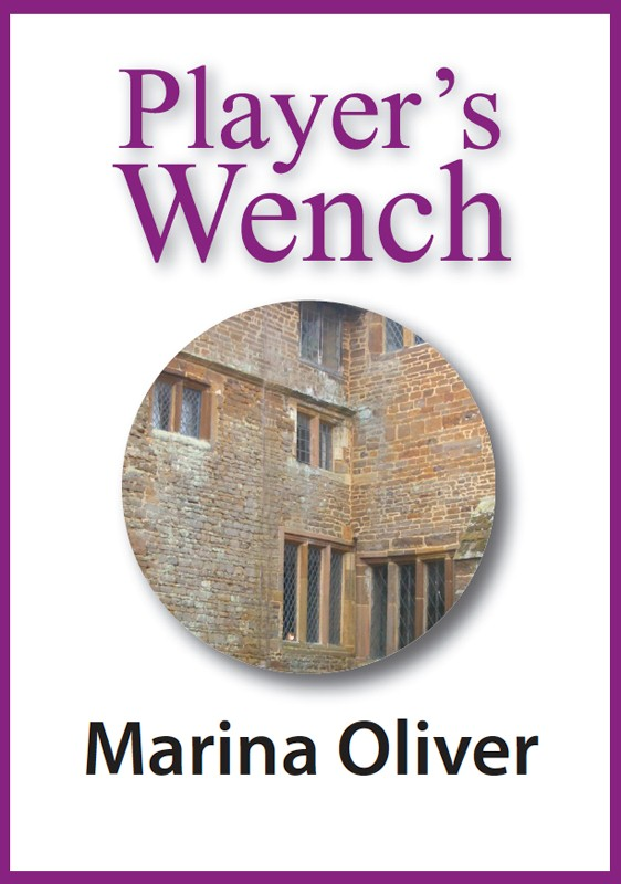 Cover of Player's Wench ebook